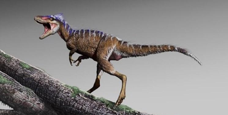 کشف دایناسوری کوچک تر از انسان
