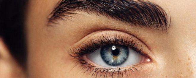 وقتی چشم در چشم می شویم چه اتفاقی می افتد؟